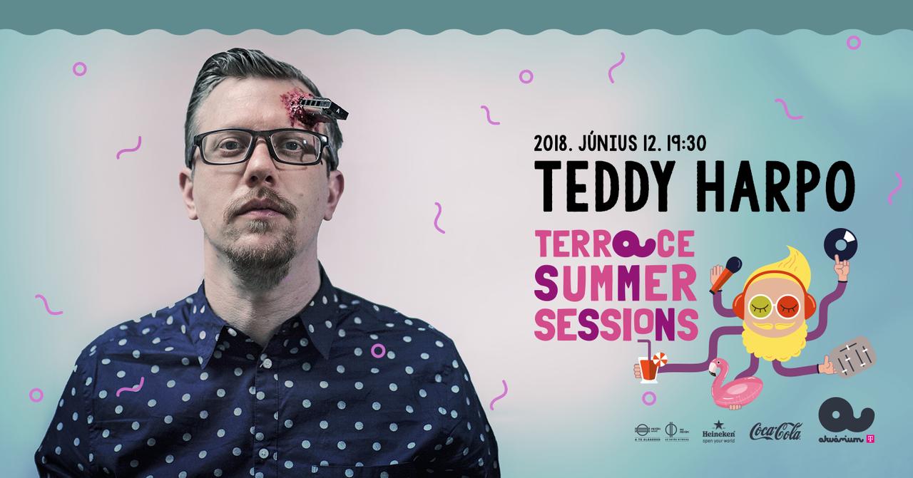 Teddy Harpo One Man Band koncert Akvárium Terrace Summer Session Petőfi Rádió Heineken Coca Cola