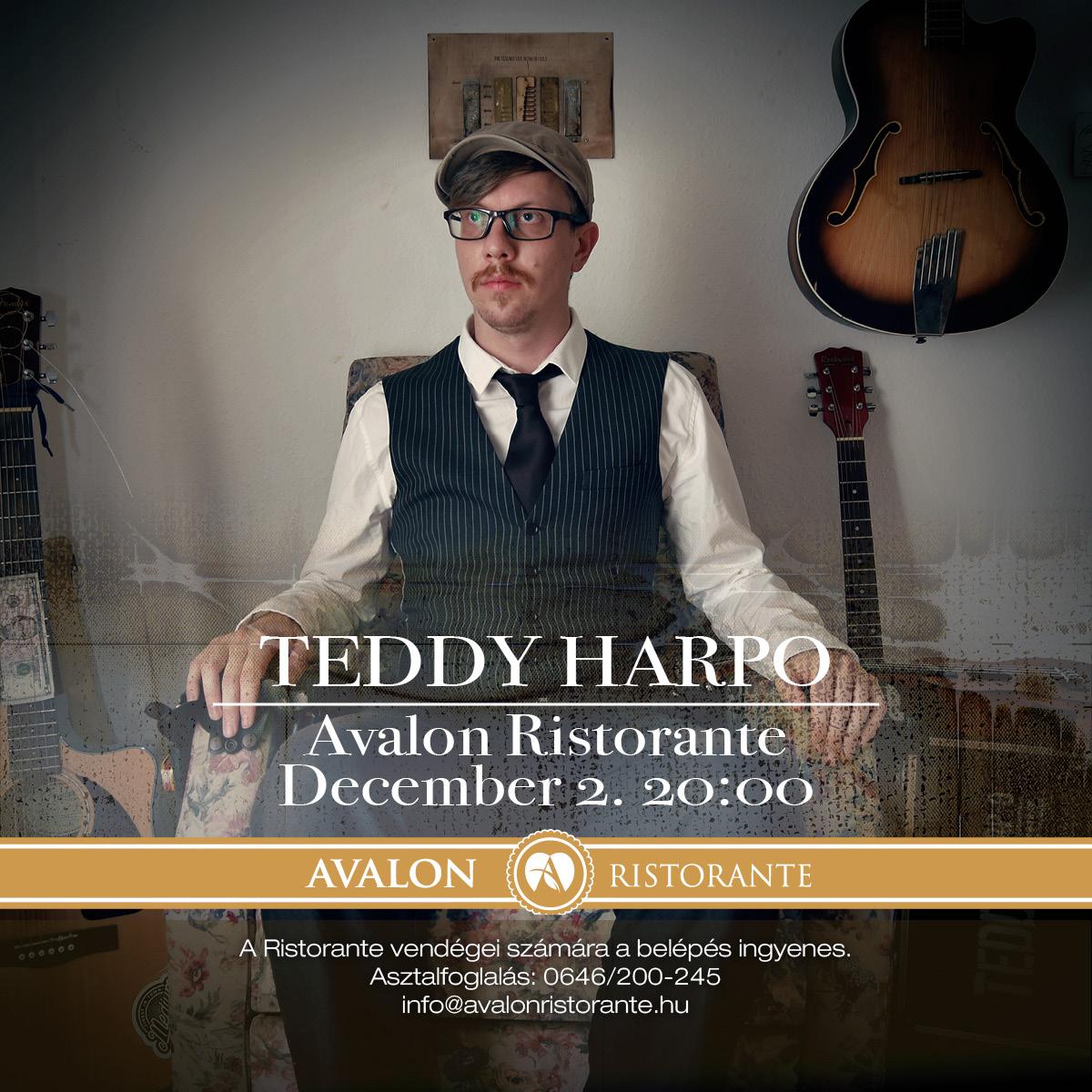 Teddy Harpo One Man Band Koncert Miskolc Avalon Park